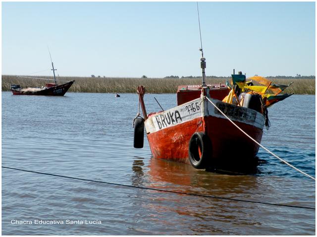 Botes de pesca en el río - Chacra Educativa Santa Lucía