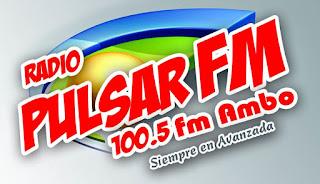 Radio Pulsar 100.5 FM Ambo