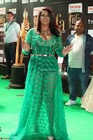 Mumaith Khan in Transparent Green Plazo Kurti at IIFA Utsavam Awards 2017  (Telugu and Kannada) Day 2  Exclusive 13.JPG