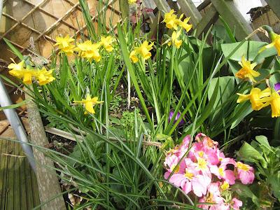 http://snadralovesblogging.blogspot.co.uk/