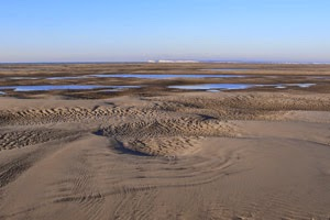 The Goodwin Sands at low tide