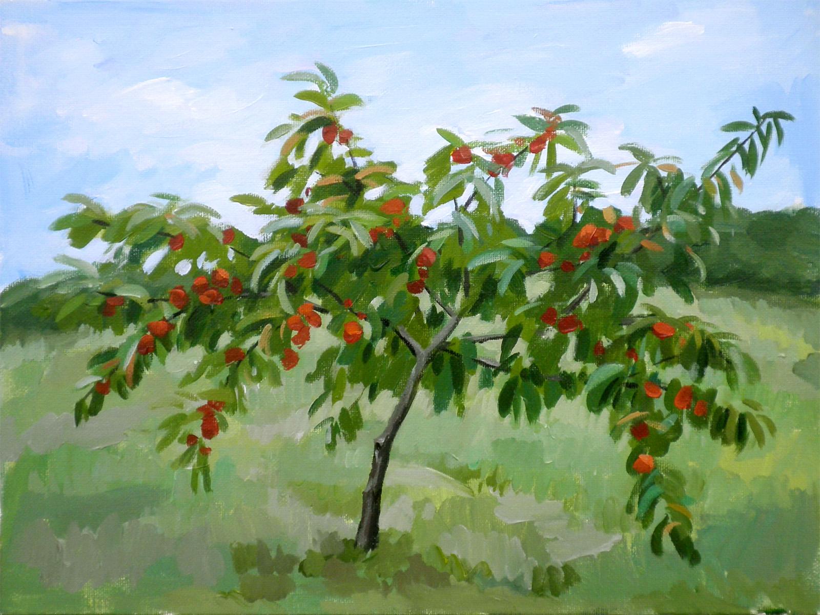 Peach Tree Painting | www.imgkid.com - The Image Kid Has It!