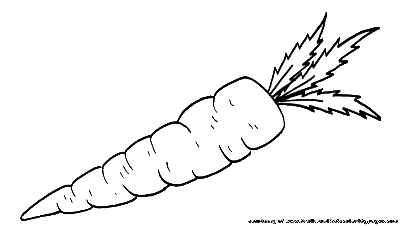 Free Carrots Outline Coloring Pages
