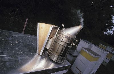 Πωλούνται μελίσσια, μελισσοκομικός εξοπλισμός, και μελισσοκομικό φορτηγό