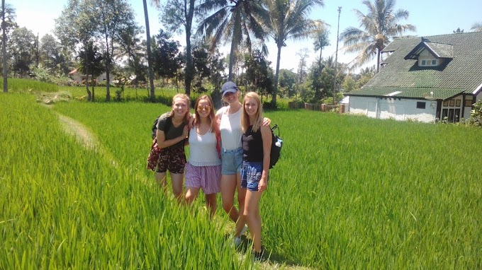 Tetebatu Walking Tour ( Walk To The Rice Fields, Waterfall, Small Village And Monkey Forest )