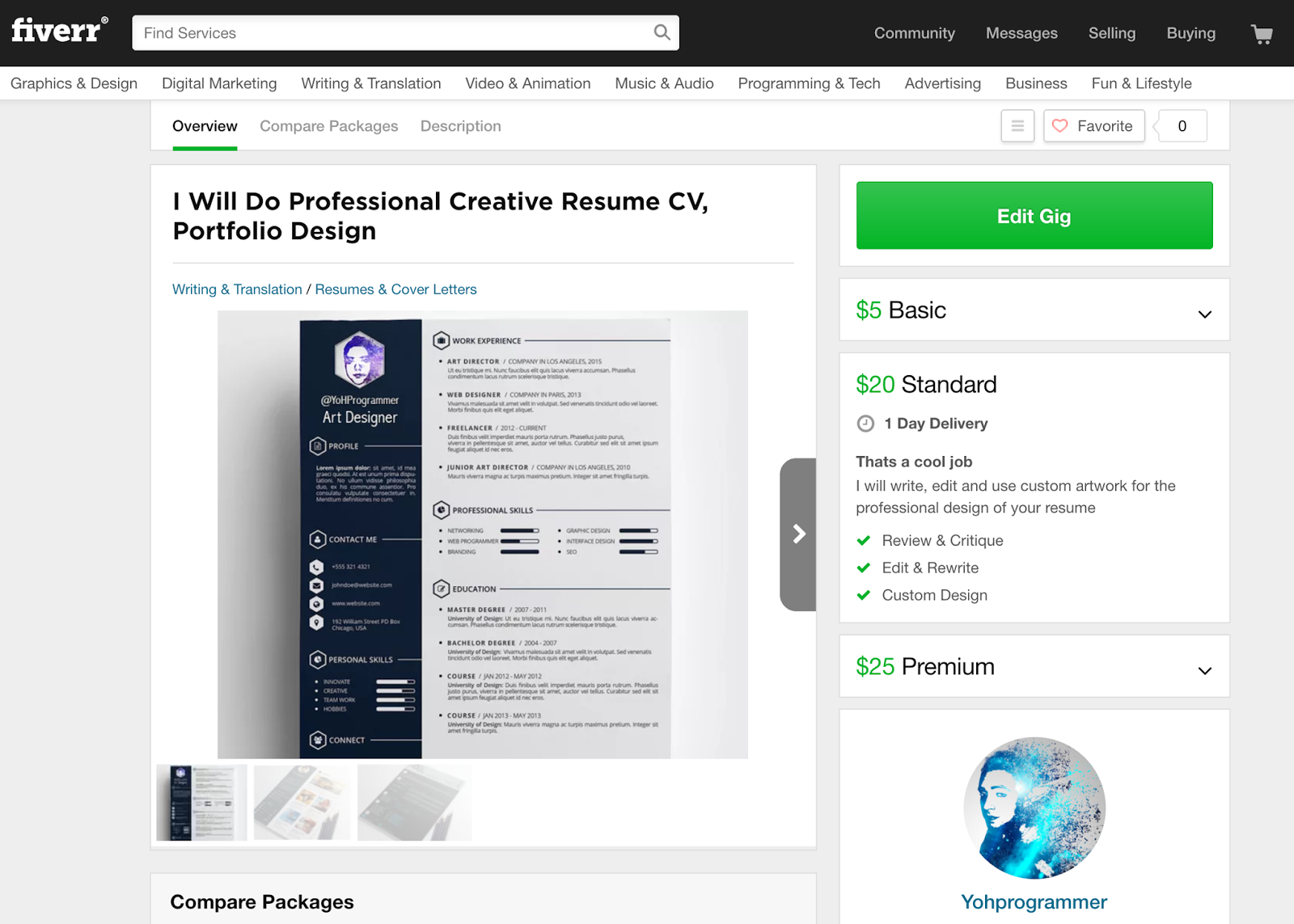 fiverr freelancer cv resume design