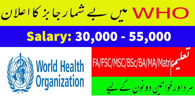 World Health Organization WHO Jobs 2020 Apply Now