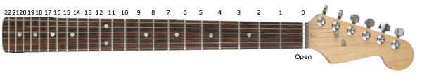 Fret Gitar