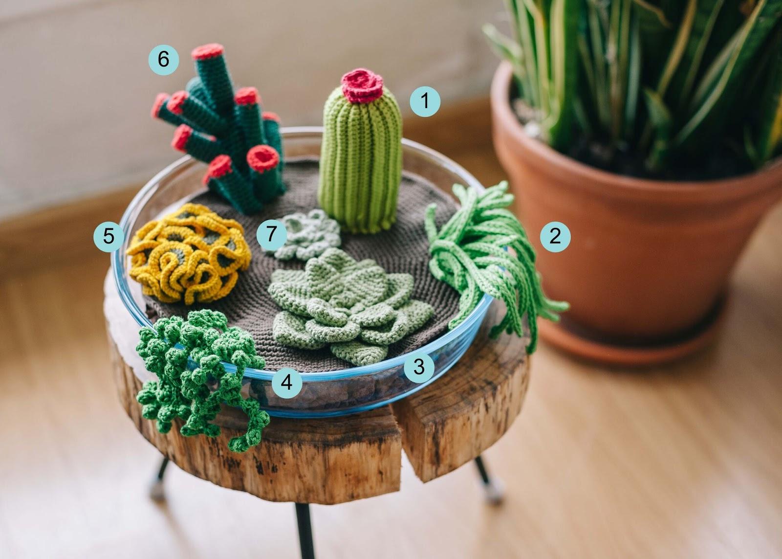 El blog de Dmc: Patrón de ganchillo: terrario de cactus y suculentas | 1143x1600