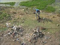 Un employé municipal collecte les déchets derrière le temple