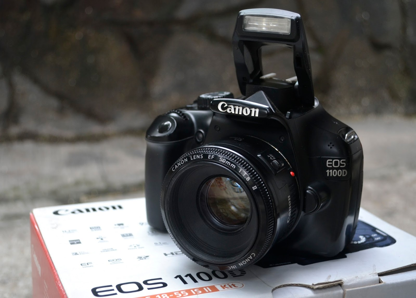 Jual Canon Eos 1100D Lensa Fix 50mm