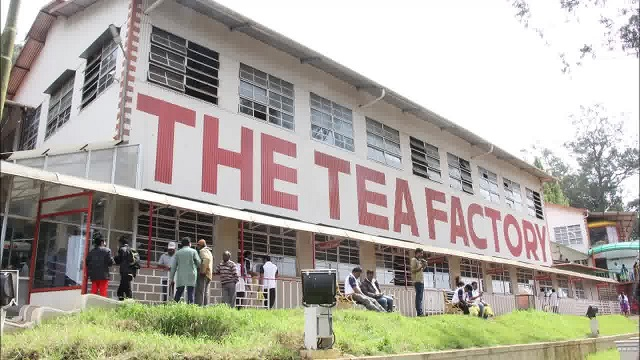 The Ooty Tea Factory