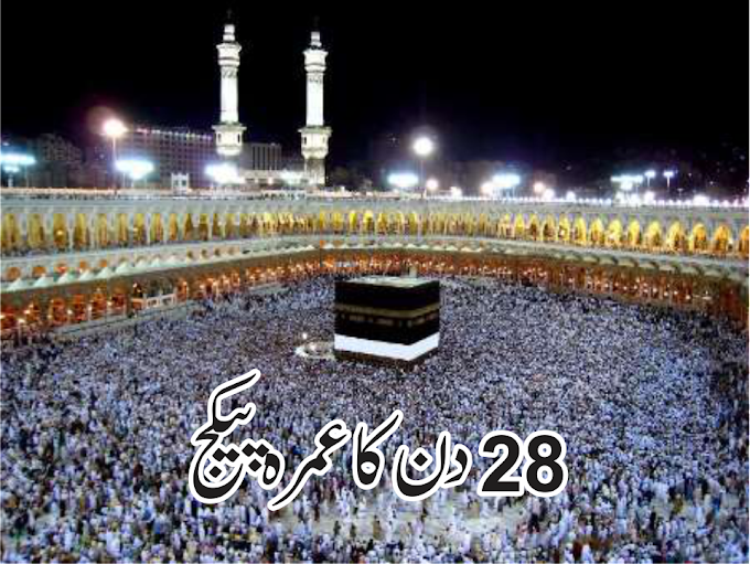 28 Day's Umrah Package
