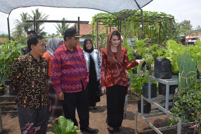 Dengan Perkembangan Tekhnologi Pertanian Saat Ini, Arumi Bachcin Berharap Indonesia Bisa Menjadi Lumbung Pangan Dunia