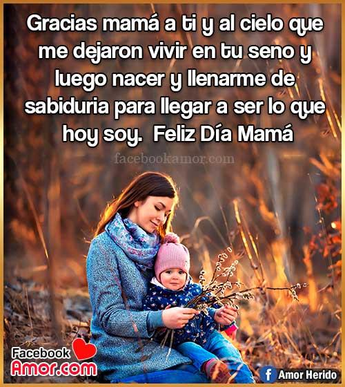 frases hermosas para mamá