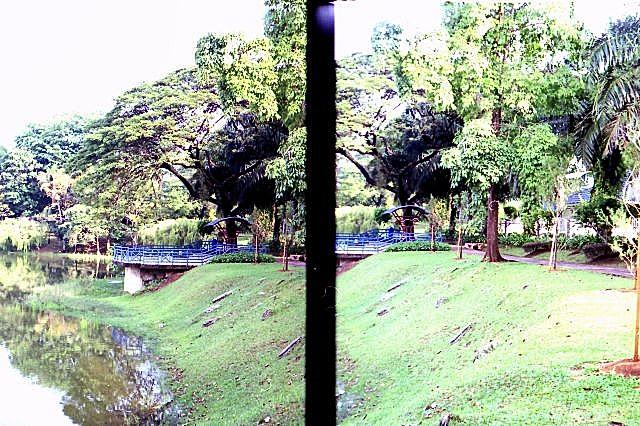 Canon Autoboy Tele 6, Half-Frame Image 03