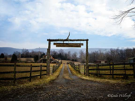 A Ranch Style Gate In Shenandoah County