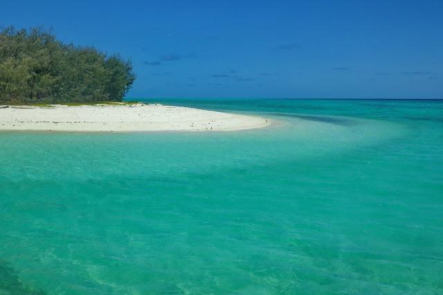 Trauminsel Strand Heron Island Meer Traumstrand Beach