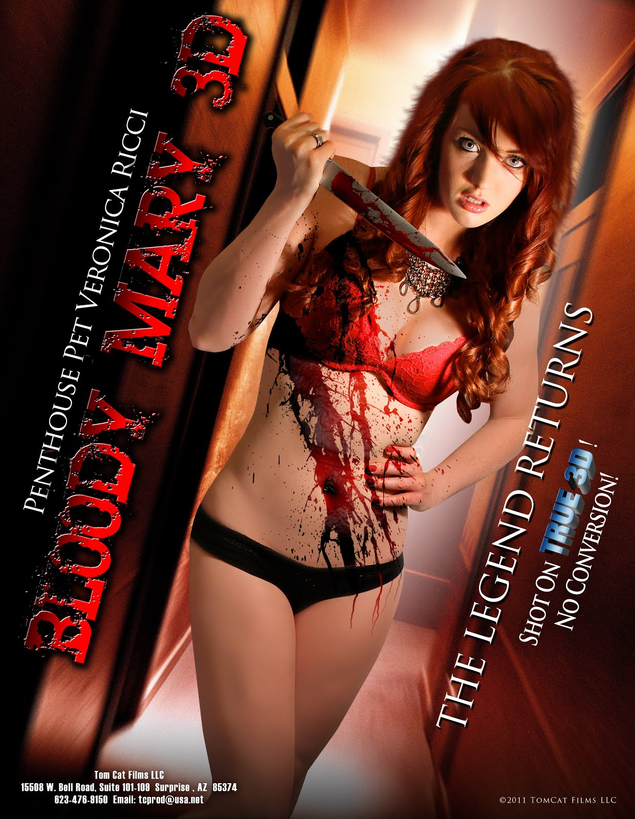 Bloody Mary (2011) Dual Audio Hindi 250MB BluRay 480p ESubs