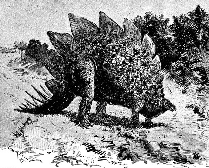 21 Essays: A Stegosaurus in the Clearing