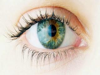 Olhos: Terçol é uma doença de inverno