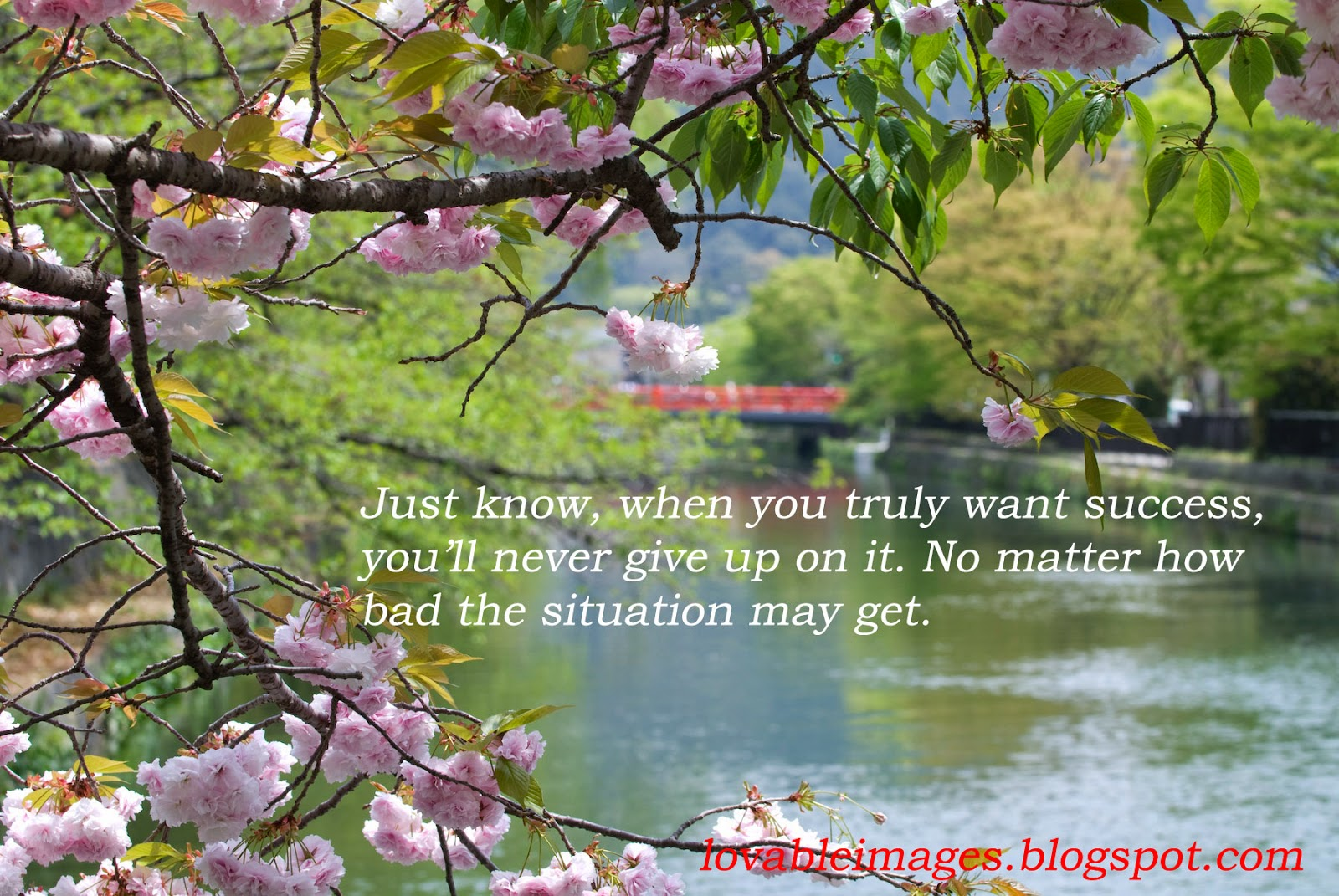 Lovable Images: Life Inspirational Quotes With Images Free ...