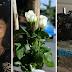 Τραγικό στη Θεσσαλονίκη: Τι έκλεψαν από το σημείο του πολύνεκρου τροχαίου