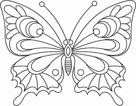Tranh tô màu con bướm sinh động