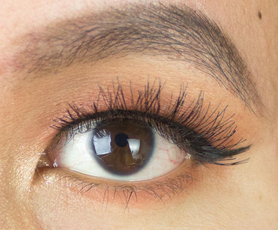198ab2844b8 Warm Sienna Browns Eye Look ft. Anastasia Eyeshadows | Portrait of ...