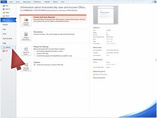 Microsoft Office Program