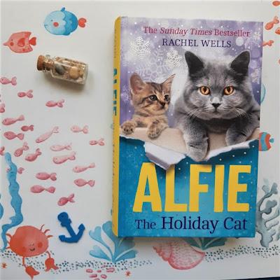 alfie-holiday-cat