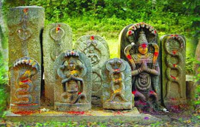 How to Observe Nag Panchami?