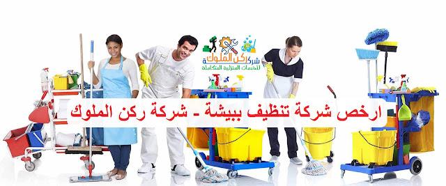ارخص شركة تنظيف منازل بيشة