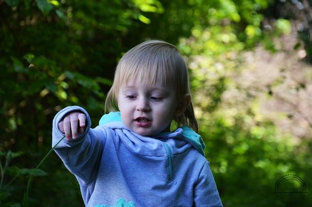Jak ułatwić dziecku poznawanie przyrody?