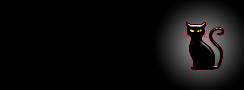 Cat's eye twinkles in dark