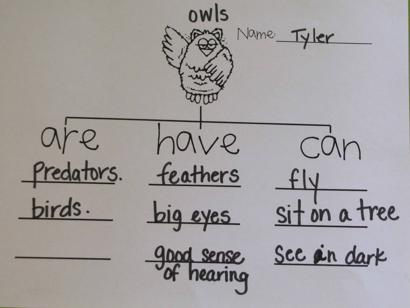 Comfortable Owl Moon Speech Language Activities No Cards