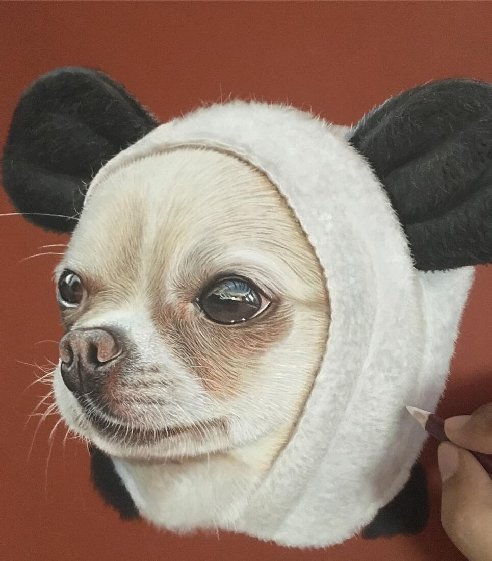 11-Chihuahua-in-a-Panda-Suit-Ivan-Hoo-Domestic-and-Wild-Animal-drawings-and-paintings-www-designstack-co
