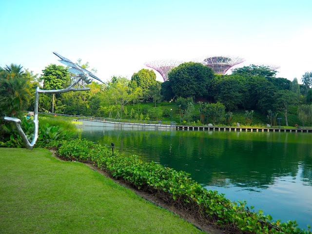 Dragonfly pond, Gardens by the Bay, Singapore