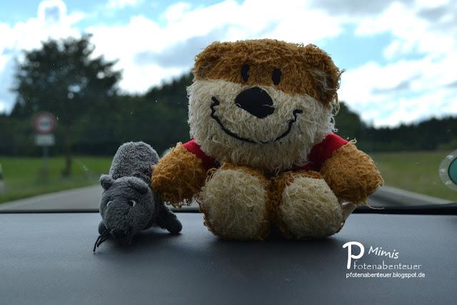 Eine Ratte und ein Bär auf Reisen