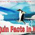 पेंगुइन से जुड़े 32 अनोखे रोचक तथ्य और दिलचस्प जानकारी Penguin Facts And Information In Hindi