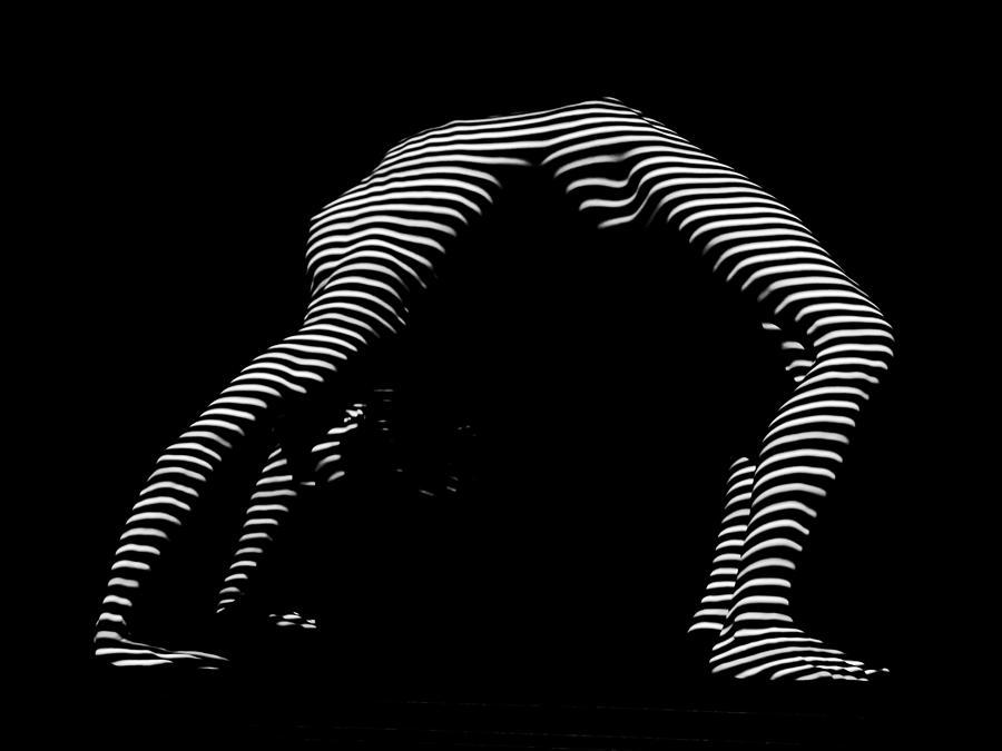Mi Enfermedad Invisible: Síndrome de Ehlers Danlos, las Cebras Médicas.