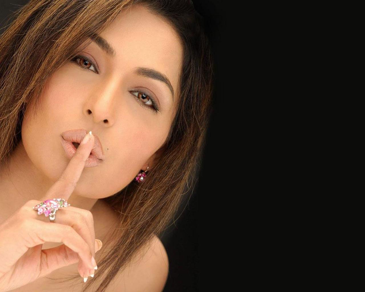 pakistani actress meera sexy
