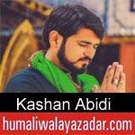 https://www.humaliwalyazadar.com/2018/09/kashan-abidi-nohay-2019.html