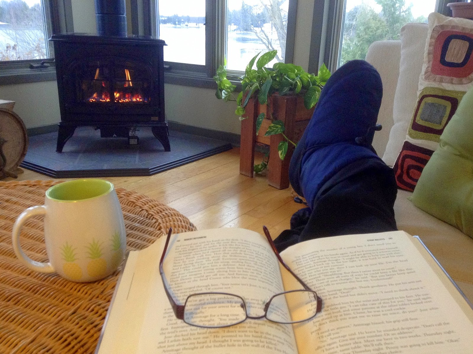 Winter Survival Tip: Stay in and read a book.
