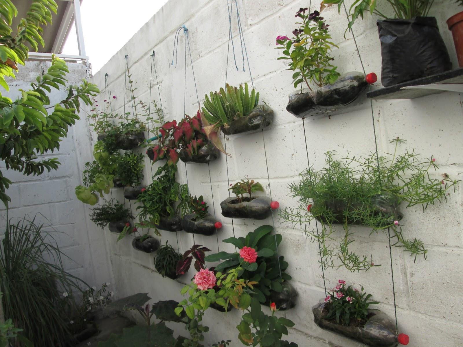 Mis cultivos jardines verticales for Jardines sin plantas