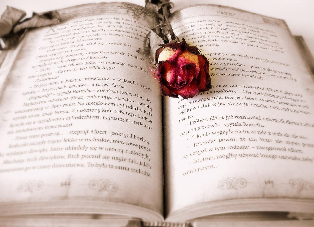 Otwarta książka, na której jest położona róża