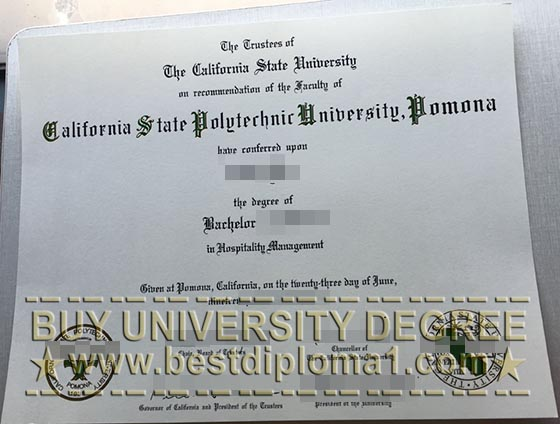 Fake Cal Poly degree