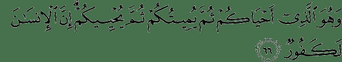Surat Al Hajj ayat 66