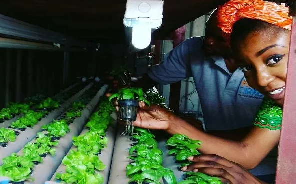 nigeria first high tech farmer