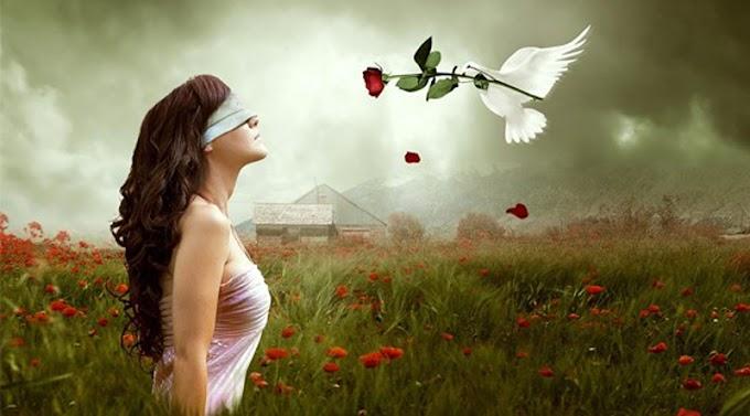 Thiền Osho - Trực giác, chứng ngộ, vô trí...